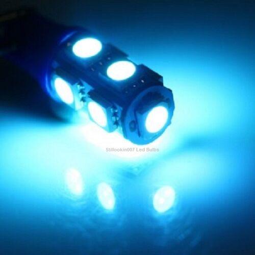 10-T5 basse tension Paysage lumière DEL conversion bleue 9 DEL par ampoule