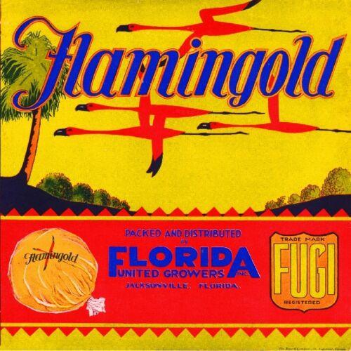 Jacksonville Florida Flamingold Flamingo Orange Citrus Fruit Crate Label Print