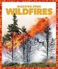 Wildfires by Vanessa Black (Hardback, 2016)