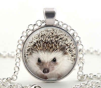 Silver Hedgehog Necklace Pendant, Cute Animal Photo Jewellery Gifts for Women