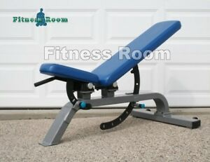 Details About Precor Icarian Line Commercial Adjustable Dumbbell Bench Shipping Not Included