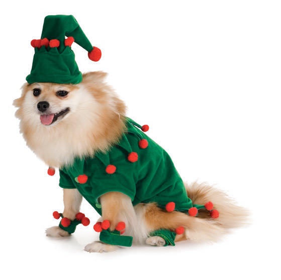 Elf Pet Dog Cat Animal Christmas Holiday Halloween Costume Santa S Helper Large   eBay  sc 1 st  eBay & Elf Pet Dog Cat Animal Christmas Holiday Halloween Costume Santa S ...