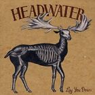 Lay You Down by Headwater (CD, Jan-2008, CD Baby (distributor))