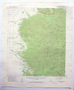 Topo Map Of Arizona.Chiricahua Peak Arizona Vintage Usgs Topo Map 1958 Turkey Creek
