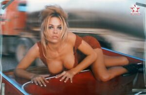 Are sexy photos of pamela anderson any more