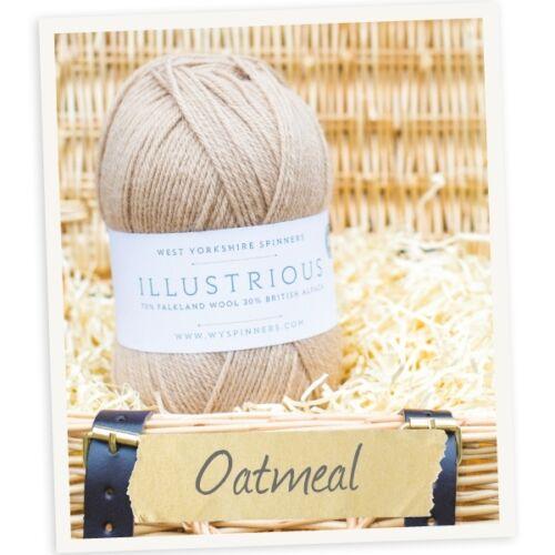 Illustres alpaga /& falkland british merino dk laine à tricoter 100g ** 25/% off rrp
