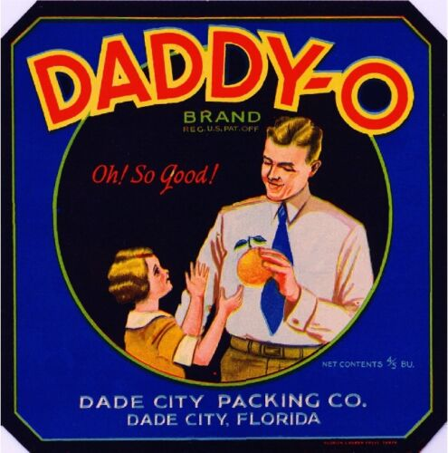 Dade City FL Daddy-O Orange Citrus Crate Label Print