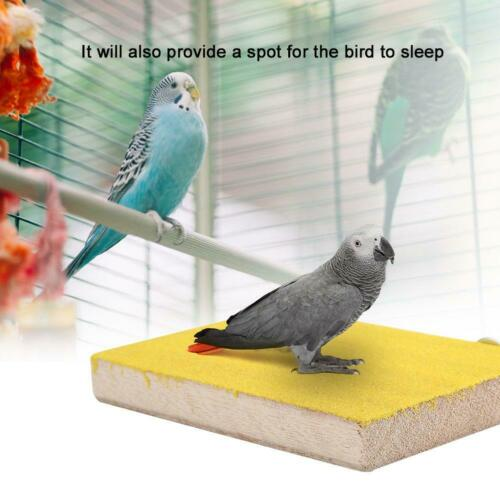 Pet Bird Cage Perch Stand Platform Chew Toy Paw Grinding For Parrot Parakeet