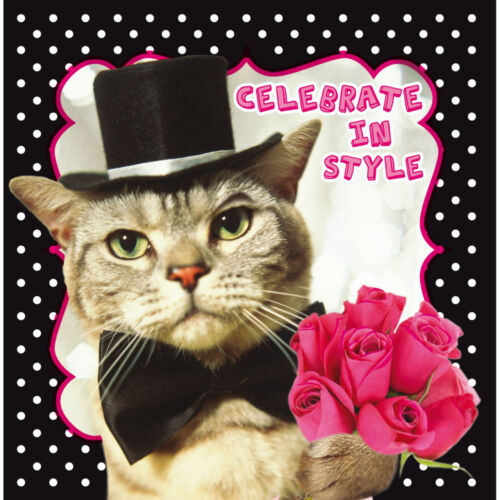 Dapper Tabby Cat in Top Hat & Bow Tie Birthday Greeting Card Cat Lovers