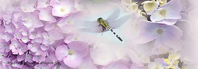 Violet hydrangeas with dragonfly,   bookmark, Maine -  hand made #12
