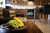 Romantic Luxury Holiday Cottage, Private Hot Tub Free Fishing Sauna Sleeps 2
