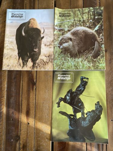 Details about  /1975 Wyoming Wildlife Magazine Wyoming Game /& Fish Comm Publication VG Lot Of 3