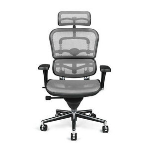 NEW Gray Mesh Office Chair Raynor Ergohuman ME7ERG | eBay