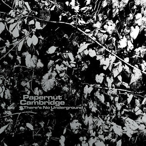 PAPERNUT-CAMBRIDGE-There-039-s-No-Underground-3-x-vinyl-7-034-MP3-NEW-Darren-Hayman