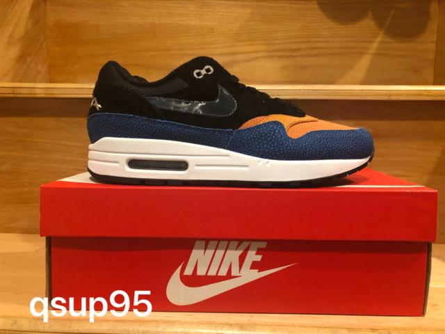 Nike Air Max 1 Swipa De'Aaron Fox shoes