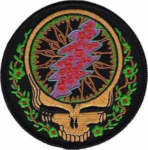 GRATEFUL-DEAD-STEAL-YOUR-FACE-VINES-EMBROIDERED-PATCH-BRAND-NEW-3804