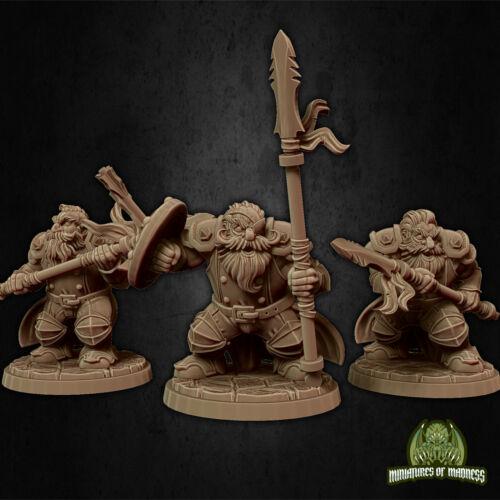 Dwarfs Soldiers #2D/&DPathfinderWarhammerFantasy3D printed