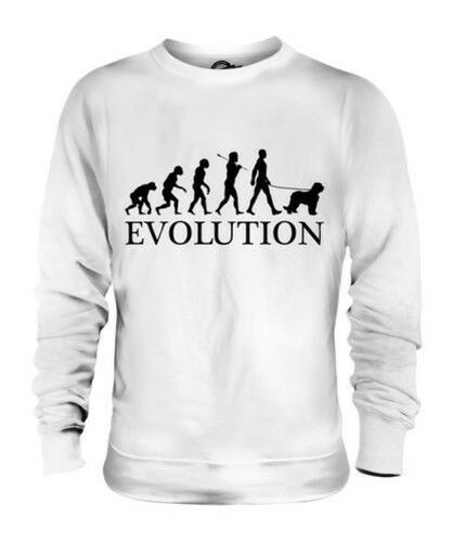 Briard Evolution Of Man Unisex Suéter Hombre Mujer Dog Lover Berger Regalo