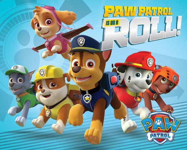 Paw Patrol - On a Roll - Kinder Serie Mini Poster Plakat Größe 50x40 cm