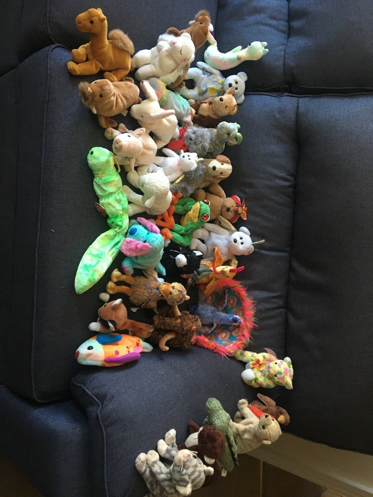 Ty beanie babies bundle- good condition