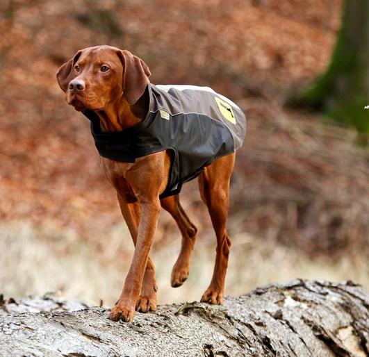 Karli Touchdog Outdoormantel, Hundemantel, Größe Größe Größe L Braun     Adoptieren  63d943