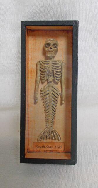 Skeleton Oh No a severed Head dollhouse Miniatures 1:12 Halloween