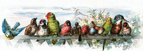 Art Print of Vintage Art Feathered Friends by Paul de Longpre