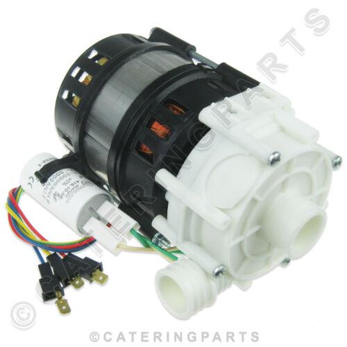 L63 T19 28 mm lavage moteur pompe pour COMMERCIAL lave-vaisselle glasswasher DIHR KROMO