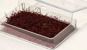 Saffron Asafron Cupe Qualitätsstufe Ar1 Von Caviar-brücke Ein Kunststoffkoffer Ist FüR Die Sichere Lagerung Kompartimentiert GroßZüGig 5g Safran Fäden