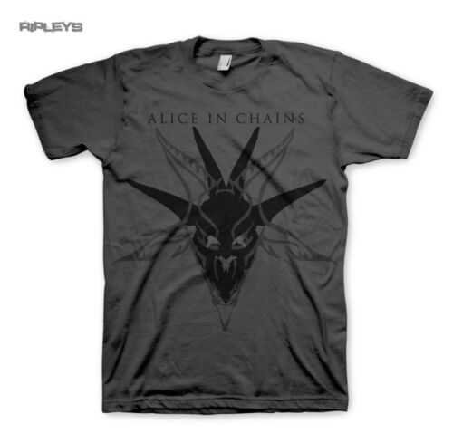 Official T Shirt ALICE IN CHAINS Charcoal Grey SKULL Logo All Sizes