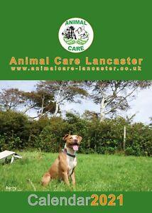 Animal-Care-2021-Calendar