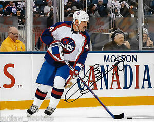 Winnipeg-Jets-Dave-Babych-Signed-Autographed-8x10-NHL-Photo-COA-B