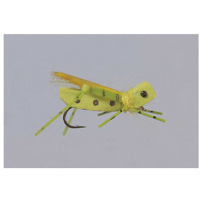 2 Rainy/'s Busy Bee #12 Bass//Trout Fly by Rainy/'s FREE SHIPPING