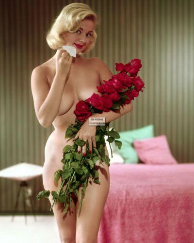 "4/""x6/""//8/""x10/""//12/""x18/"" Various Size/'s Playboy Playmate Centerfold Vintage Photos"