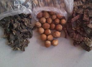 Details About 300 Gm Natural Indian Amla Aritha Shikakai Herbs For Strong Shiny Hair Diy