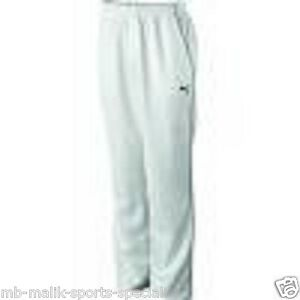 2898a1111057 Puma Calibre Cricket Trouser Junior size YL WAIST 26 4050796680890 ...
