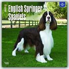 English Springer Spaniels 2017 Wall Calendar by BrownTrout