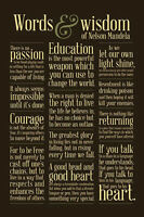 Nelson Mandela Words Of Wisdom Poster 24x36 Education Passion Heart Equality