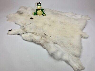 White Reindeer Rug Fur Pelt Hide