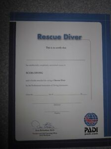 Details About Personalized Padi Rescue Scuba Diver Certificate Great Gift