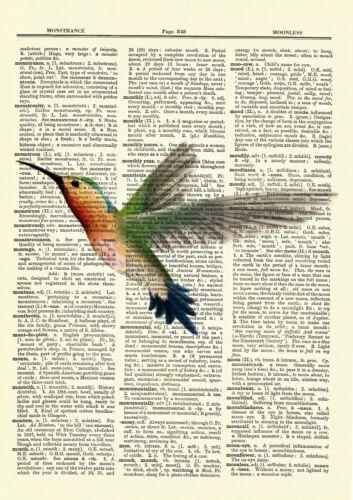 Hummingbird Dictionary Art Print Vintage Picture Poster Nature Wall Hanging Bird