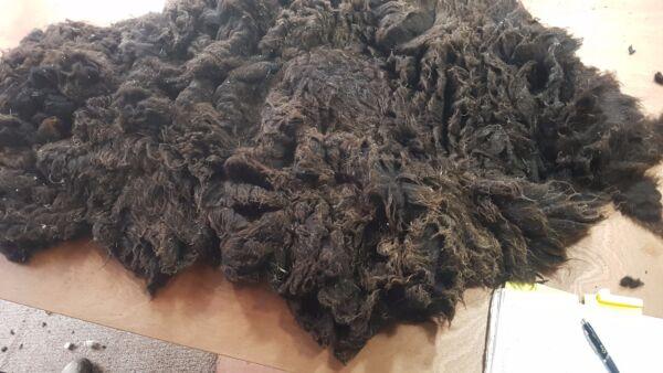 cuentos de hadas lana fieltro lana registra Filzset s23-35