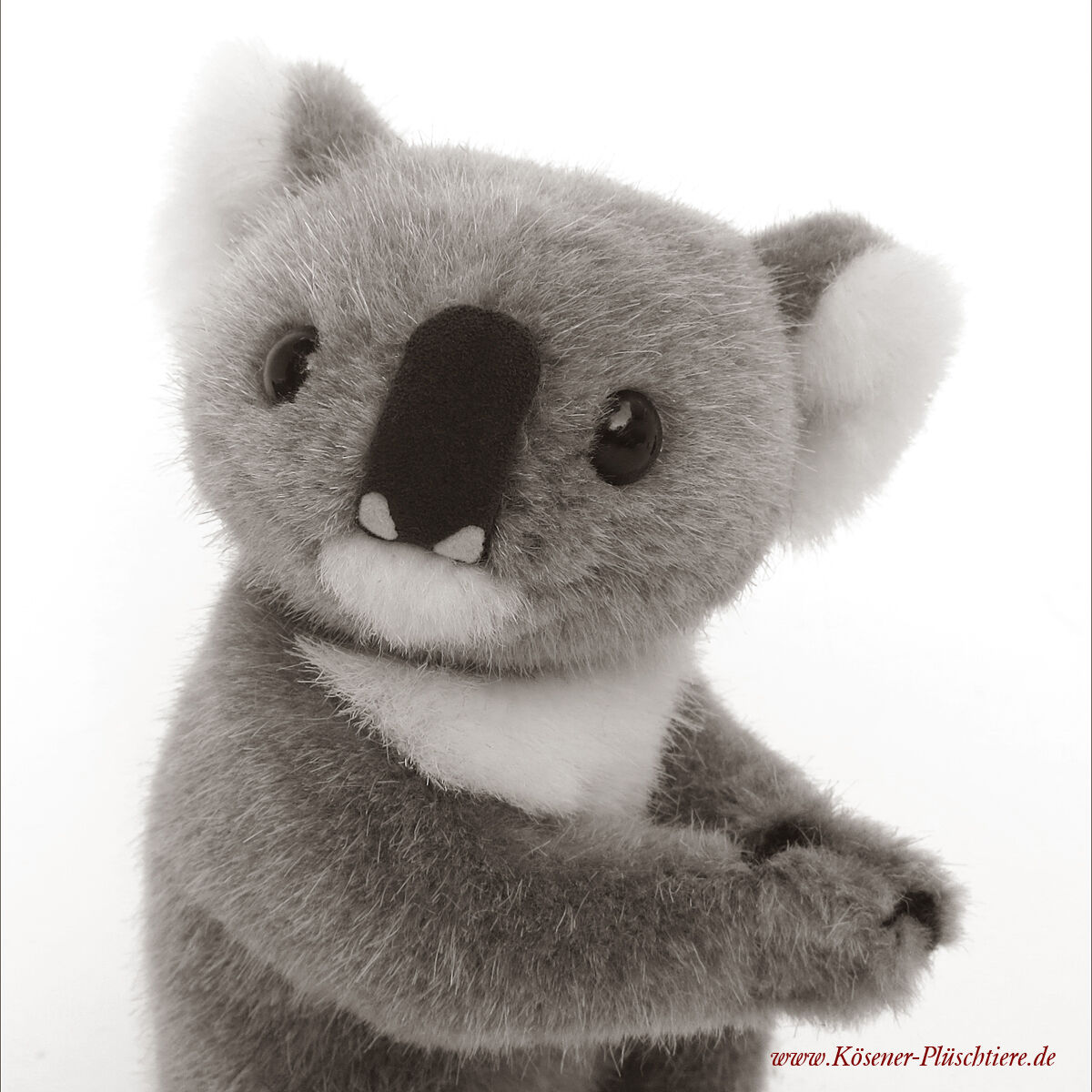 Kösener Koala -  4190 - Plüschtier, naturgetreu mit drehbarem Kopf