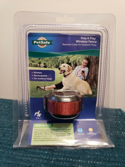Play Wireless Fence Receiver PetSafe Stubborn Dog Stay