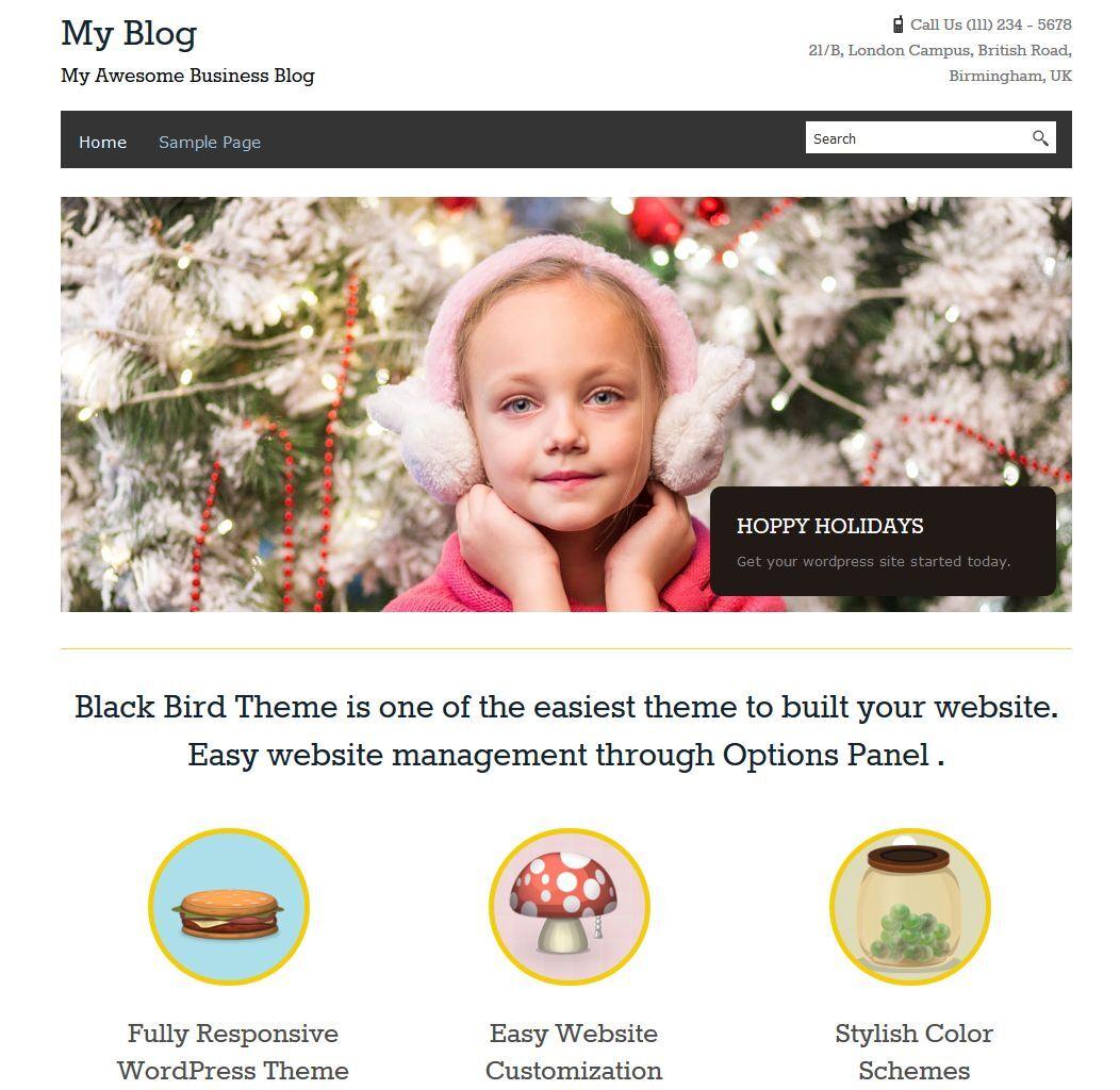 Wordpress Website With 3 Months Free Hosting  10 + Plugins 2