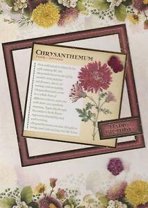 Image Is Loading Autumn Birthday Cards Handmade Flower Card September October