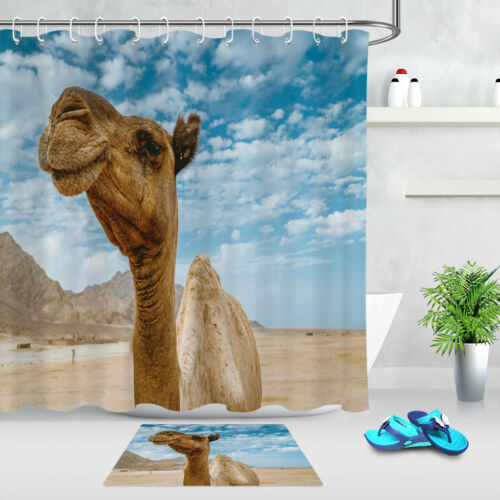 Desert Gobi Camel Animal Bathroom Waterproof Fabric Shower Curtain /& 12 Hooks