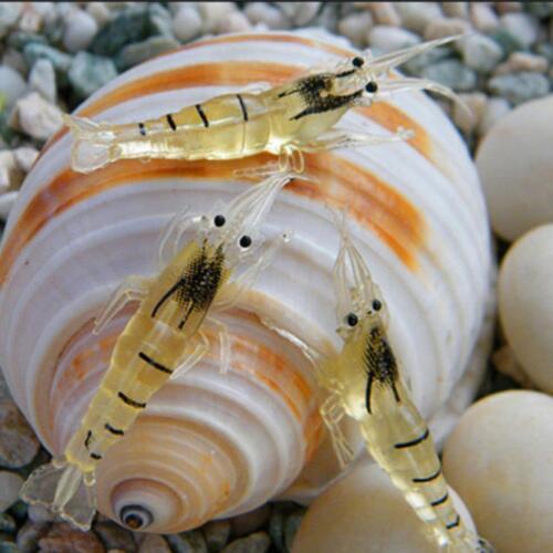 Bait Soft Shrimp Grass Shrimp Plastic Fishy Smell Luring Fishing Gear CA