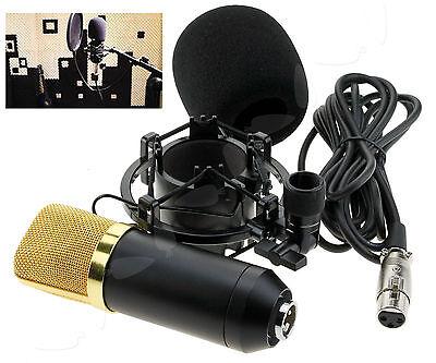Condenser Microphone Sound Audio Studio Dynamic w/Shock Holder Mount Full Set