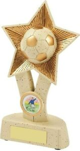 160mm-Football-Trophy-RRP-7-95-engraved-and-postage-free